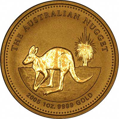 Reverse Design of a Year 2005 Australian One Ounce Gold Kangaroo Nugget Coin