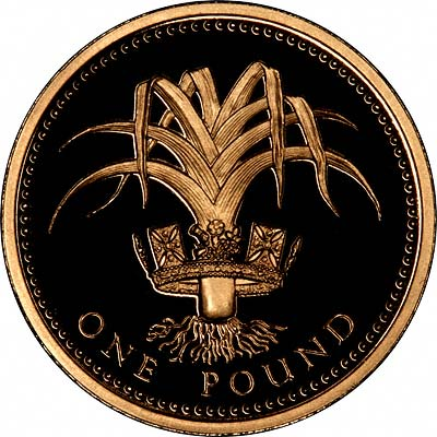 1991 one pound coin