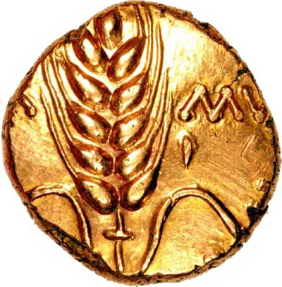 Obverse of Celtic Gold Stater of Cunobelin